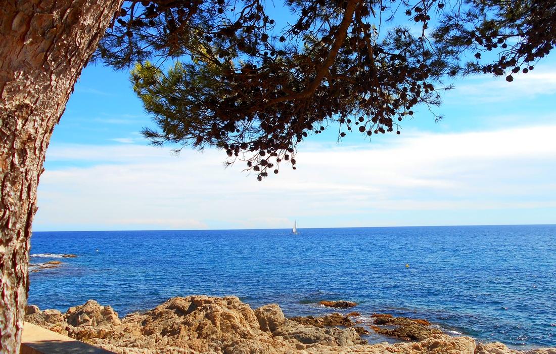 Средиземное море с побережья Испании