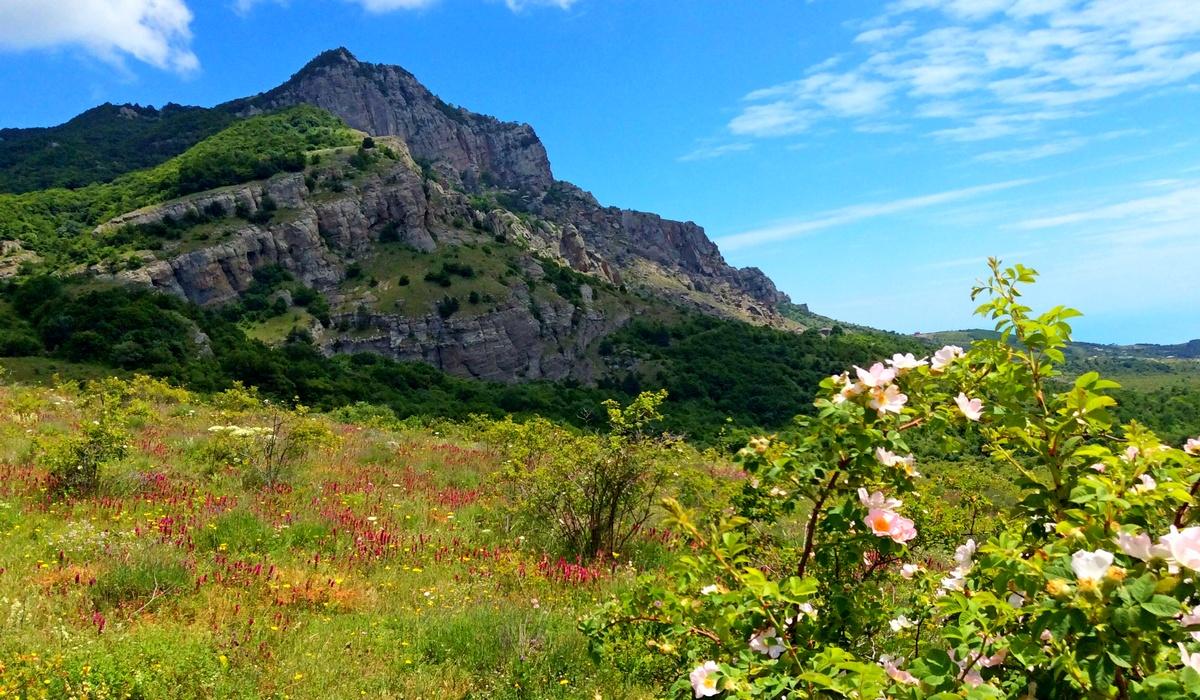 Гора Джемерджи