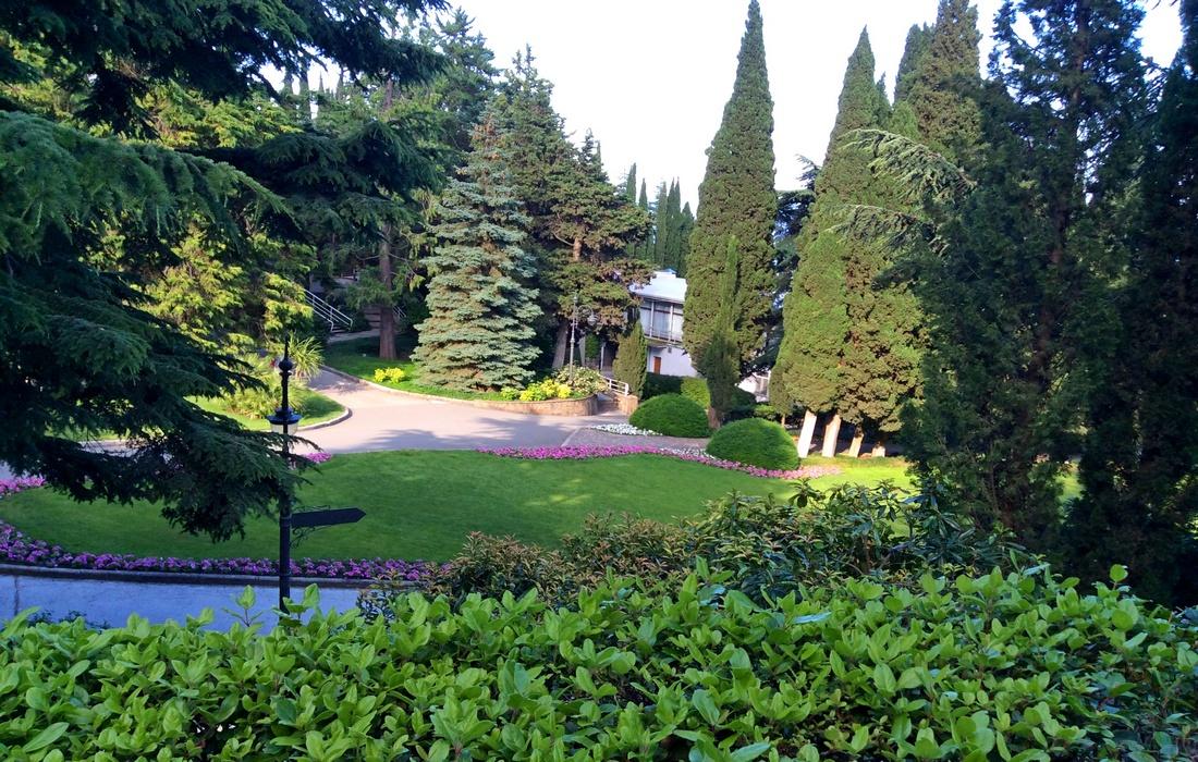 Парк Айвазовского: сосны, кедры, кипарисы