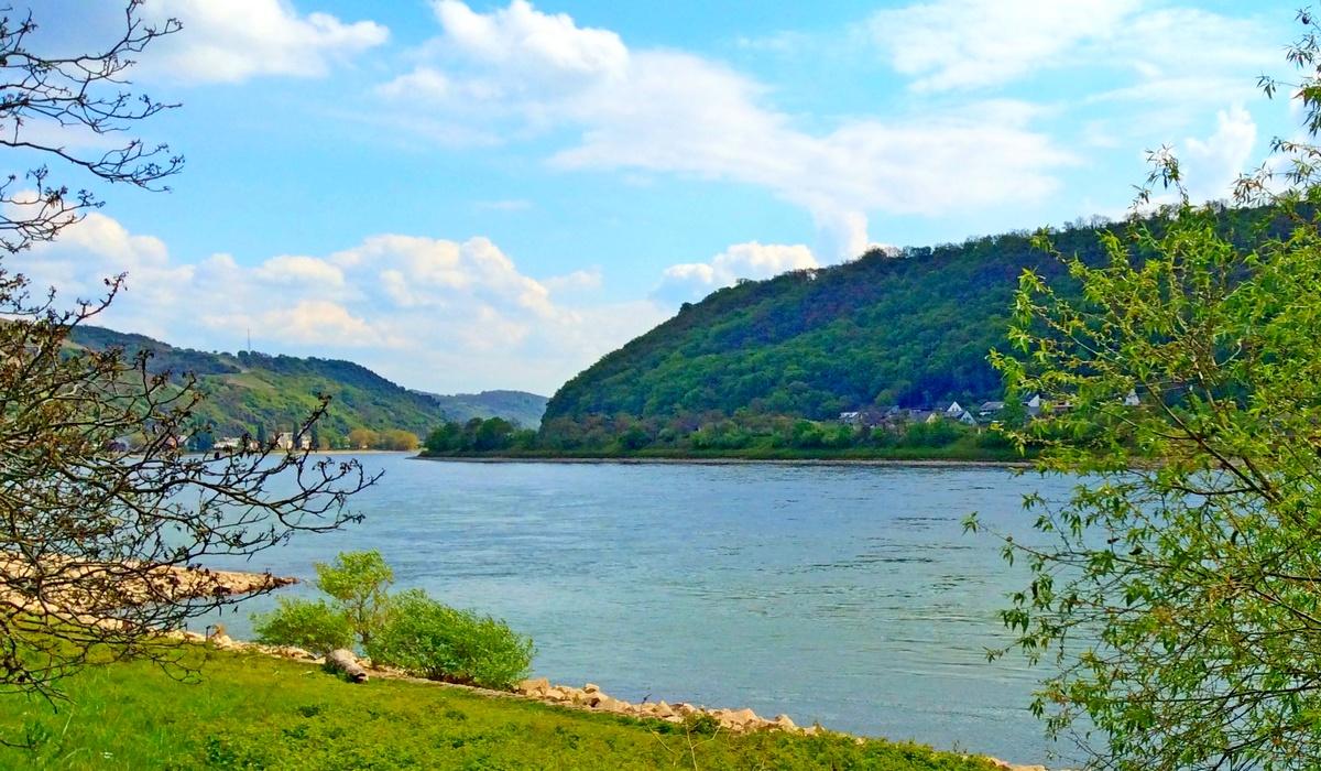 гористые берега Рейна