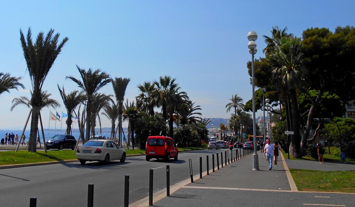 новые пальмы на месте теракта в Ницце
