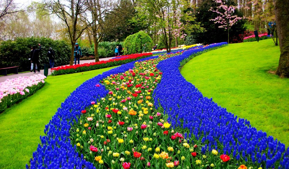 цветочные реки