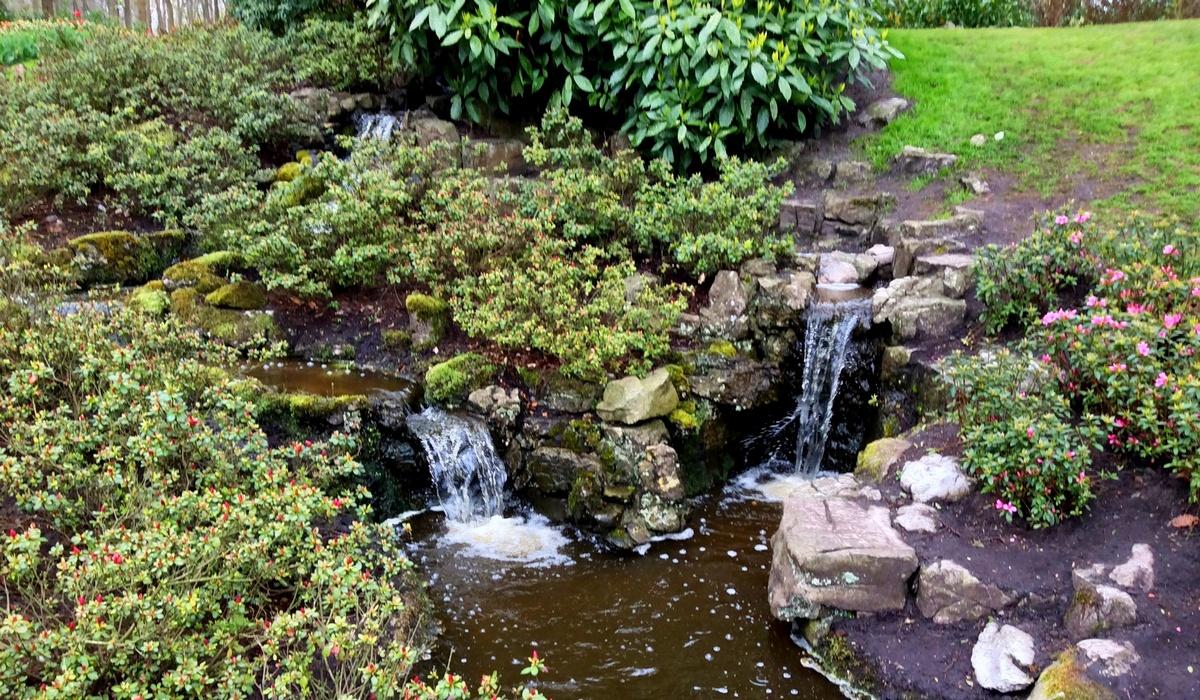 Японский сад - Кёкенхоф