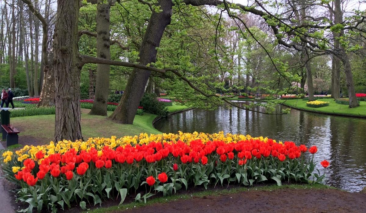 Исторический сад - Кёкенхоф