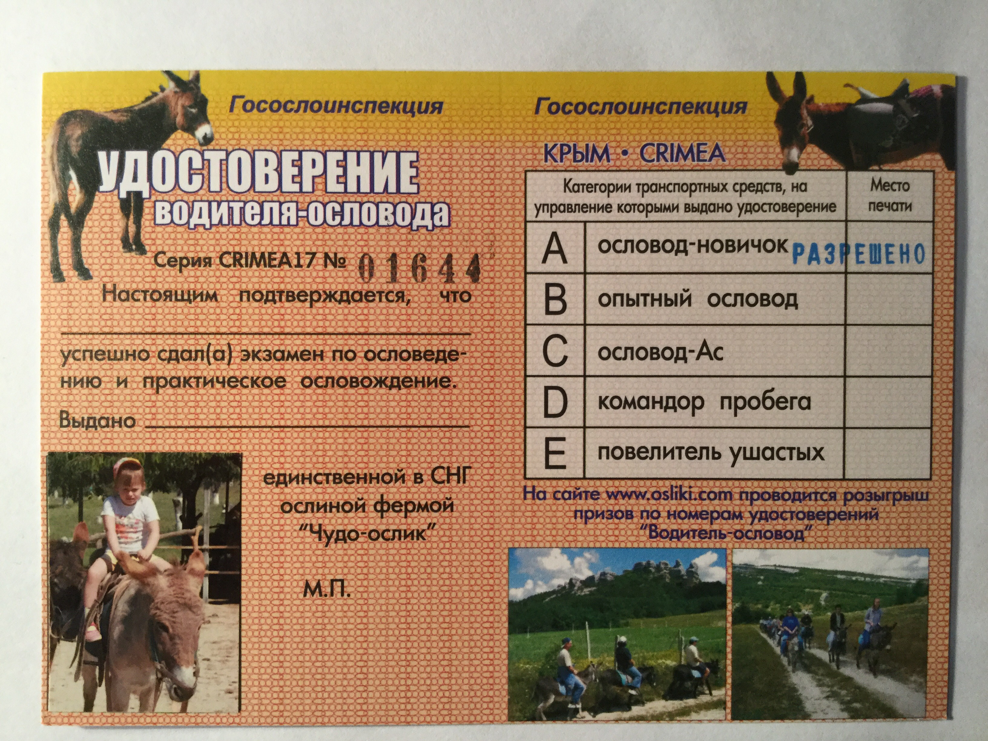 Donkey-driver licence