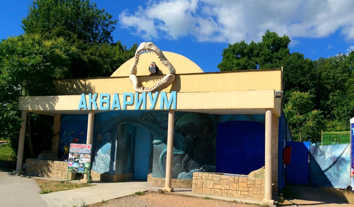 аквариум - Виноградное