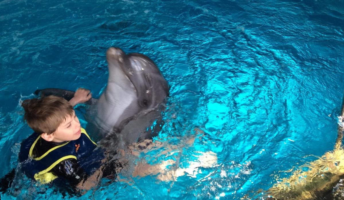 плавание с дельфинами - Ялта